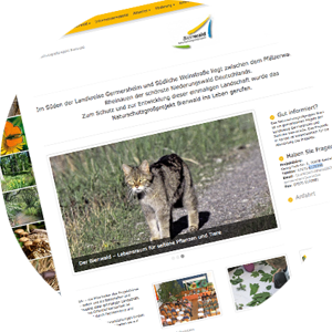 Naturschutzgroßprojekt Bienwald