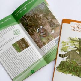 """Wanderführer aus der Umweltbildungsmappe """"Wildkatze"""" des Bunds für Umwelt und Naturschutz Deutschland e. V. (BUND)"""