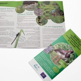 Flyer zur Ausstellung im Walderlebniszentrum Soonwald