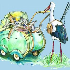 Illustration für die Infotafel zur Fischkinderstube Edingen-Neckarhausen