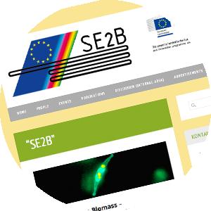 Homepage Forschungsprojekt